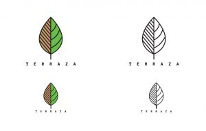 terraza-logo-development-gamma-ray-media-6
